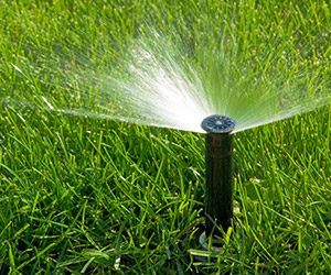 Irrigation Systems Oakville