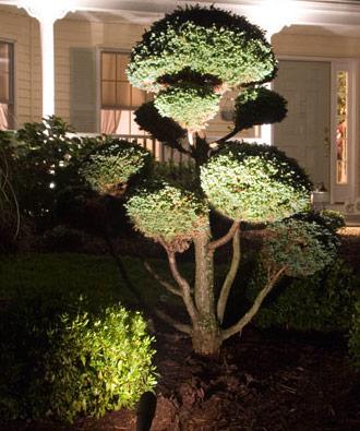 landscape lighting oakville